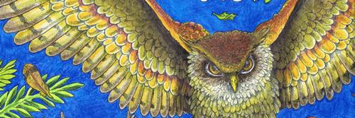 Animorphia--The-owls-cut