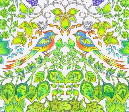 Enchanted-Forest-birds-cut